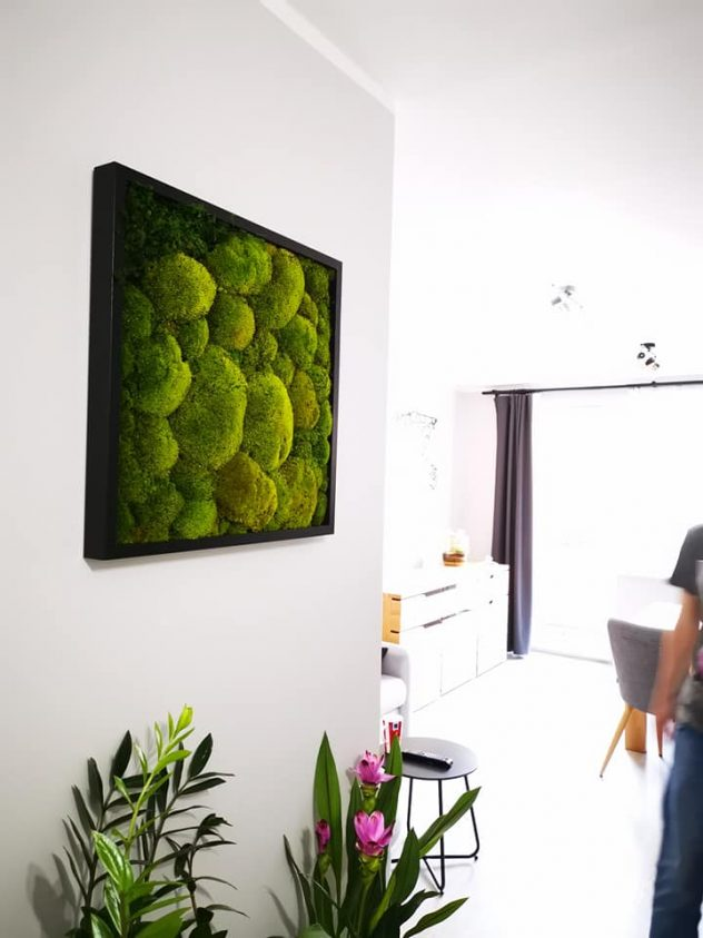 Atelier mchu w mieszkaniu