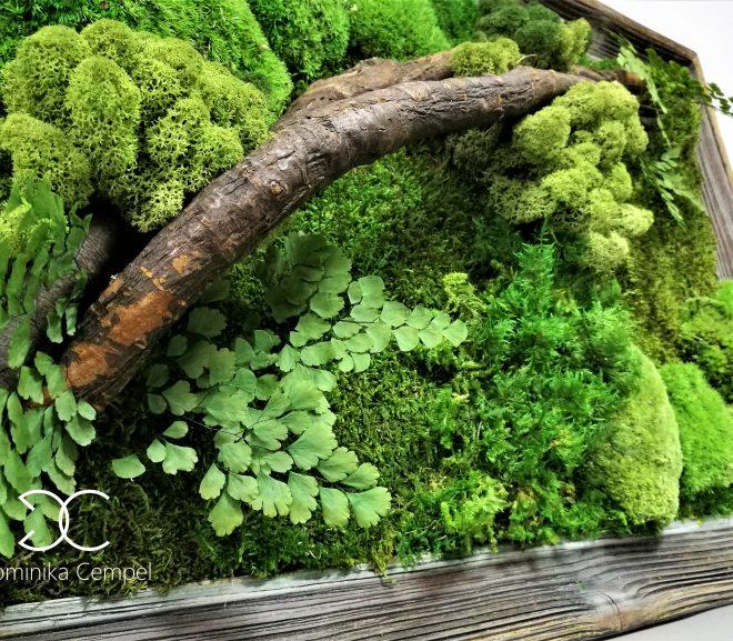 Zielone obrazy – małe formy jako alternatywa dla zielonych ścian.