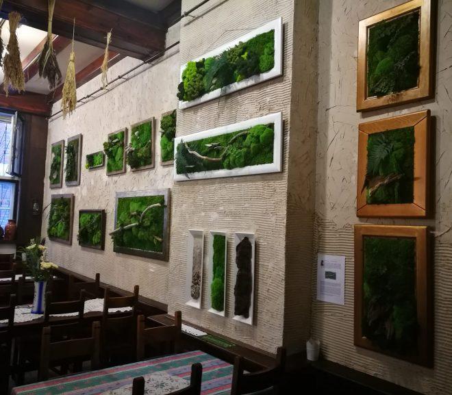 Zielone obrazy – wystawa.