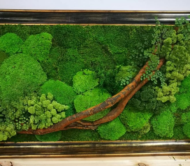 Zamiast zielonej ściany…..obraz