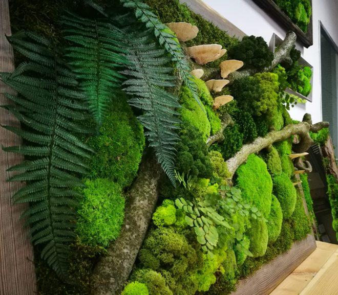 Bezobsługowy zielony las