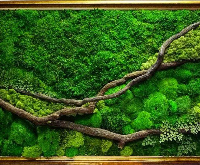 Zielony obraz   Restauracja Symfonia Smaków  Sopot