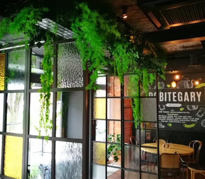 Rośliny stabilizowane w restauracji Pobite Gary