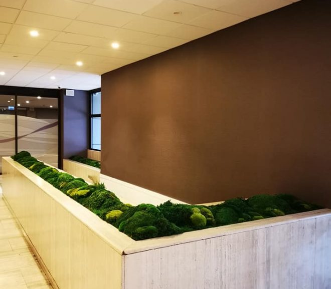 Hotel Mercure Gdynia
