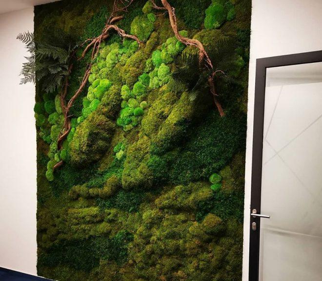 Zielona ściana w                    trójwymiarze.