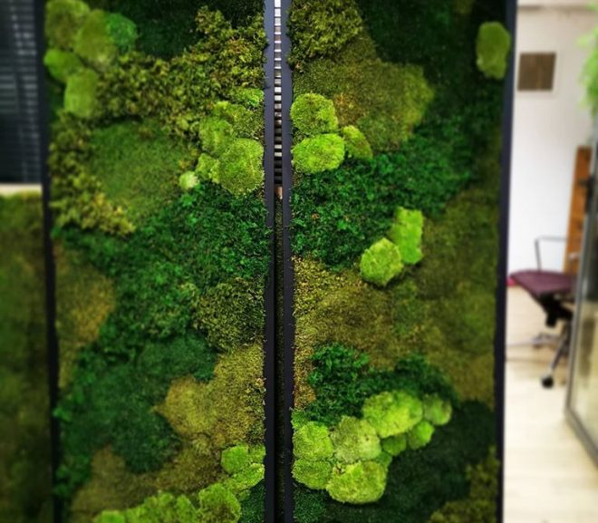 Zielone ściany w wersji mobilnej