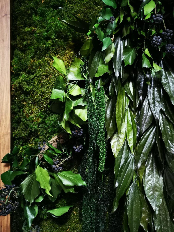 Strefa Spa Radisson Blu Hotel Sopot i zastosowane rośliny stabilizowane we wnękach.