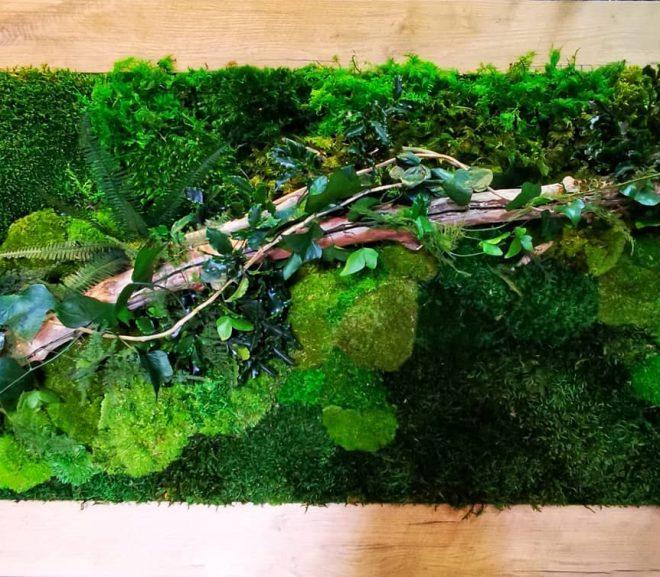 Zielony obraz z motywem roślinnym.