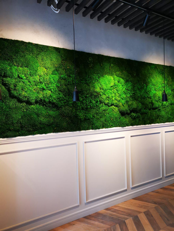 Zielona ściana z mchów